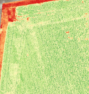 Detail view of sprayer overlap in soybeans captured with drone.