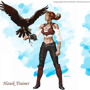 Hawk Trainer Concept Art