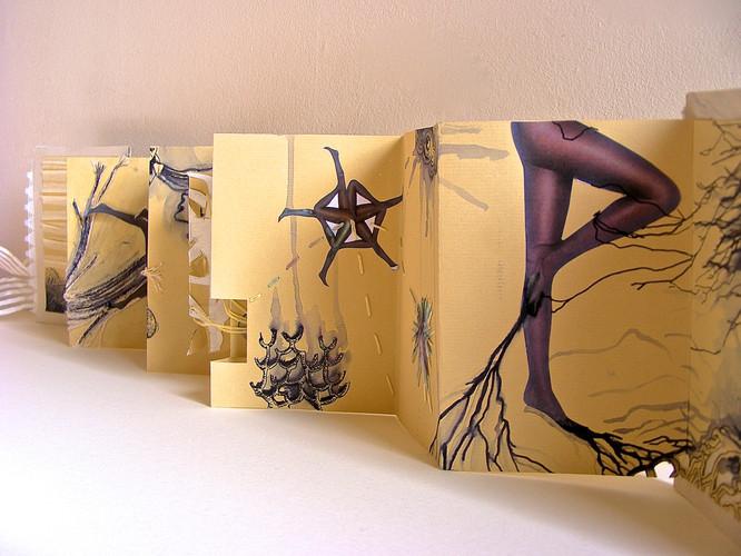 Cobwebs and Fishnets II