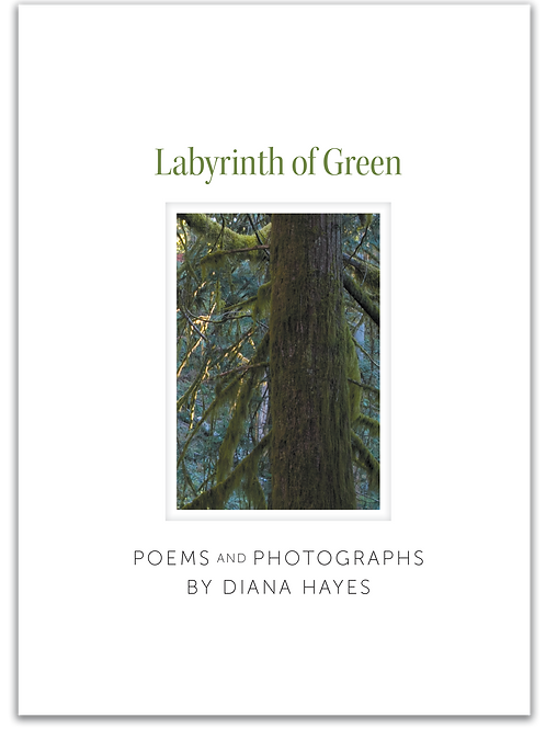Labyrinth of Green