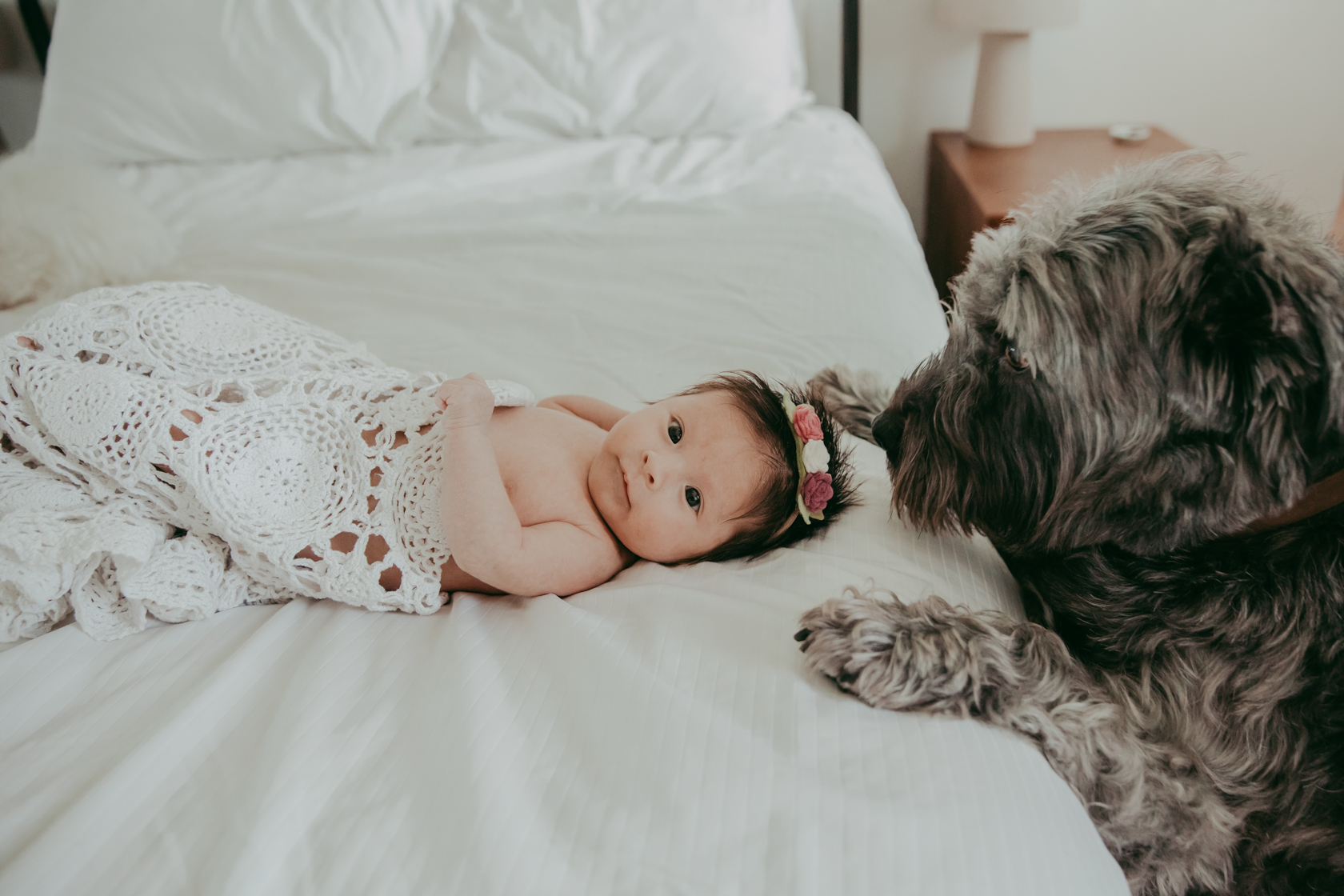 2019.09.13 newborn (2 of 3)-2