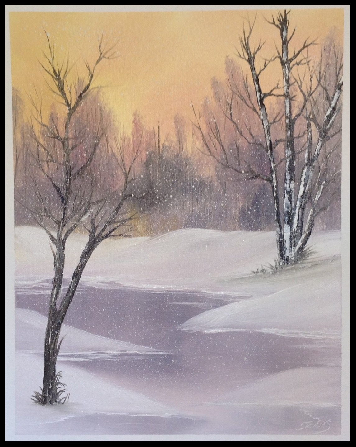 Snowfall Magic Jan 17_edited_edited