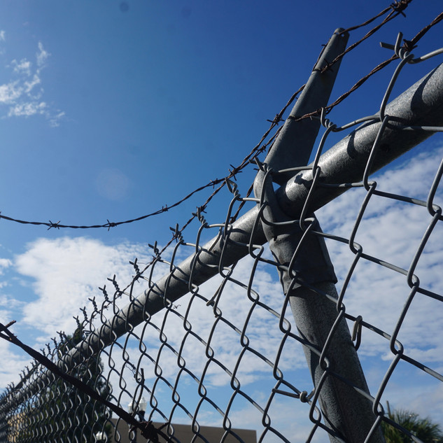 Midday Fences
