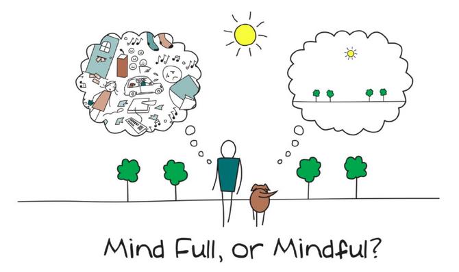 Mindfulness para niños: El poder de la rana