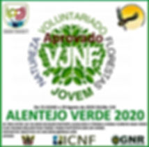 Flyer Voluntariado floresta 2 2020.jpg