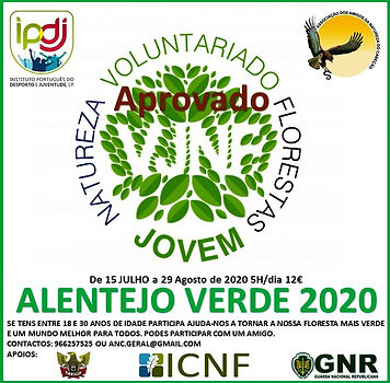 Flyer Voluntariado floresta 2 2020.jpg