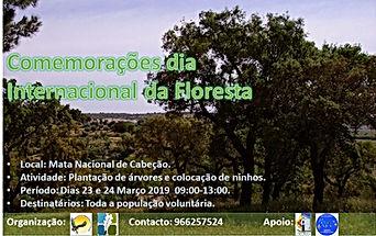 Flyer dia da floresta 2019 00 .jpg