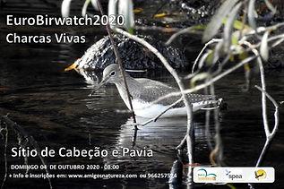Flyer Eurobirdwatch2020.jpg