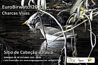 Flyer Eurobirdwatch2020.jpg