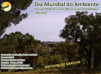 Flyer Dia Mundial  Ambiente 2019 versao