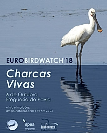 flyer_eurobirdwatch18_1.jpg