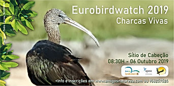 Flyer eurobirdwatch20191_1.jpg