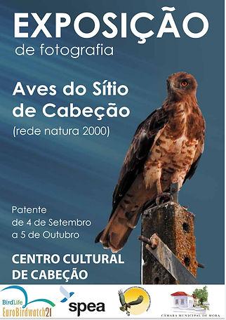 Exposicao aves Sitio Cabeção.jpg