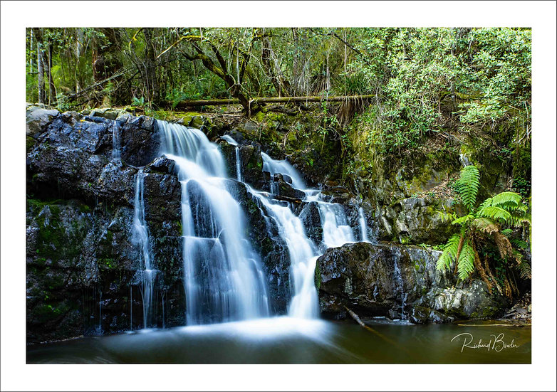 Lillydale Falls