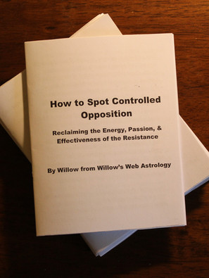 How to Spot Controlled Opposition - New Zine