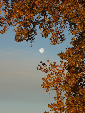 Names for the Full Moons Each Month