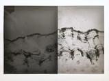 Japanese Artist: Sayako Sugawara / 海外で活躍するアーチスト、菅原さやこ