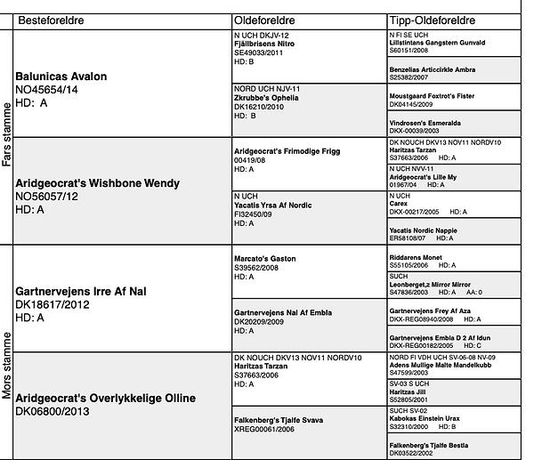 Skjermbilde 2020-11-23 kl. 22.58.03.png