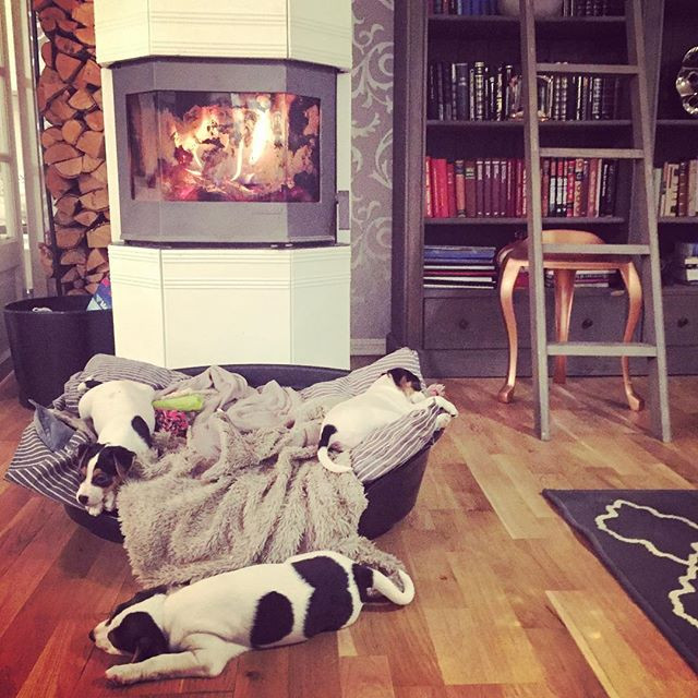 Past out in front of the fireplace...jpg