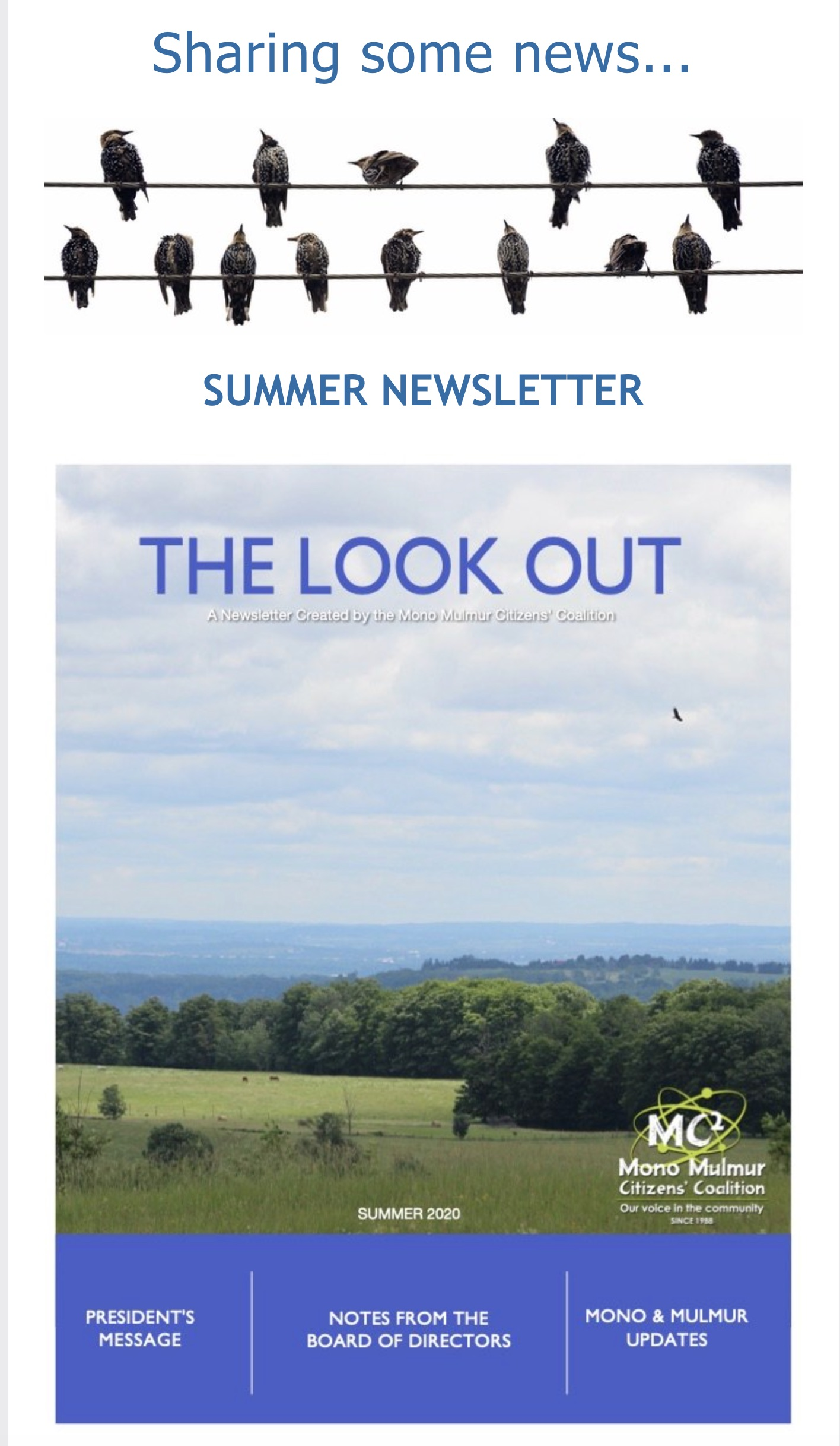 SummerNewsletter2020