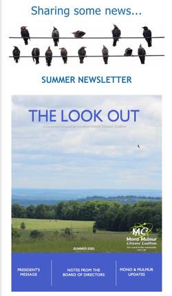 SummerNewsletter2020