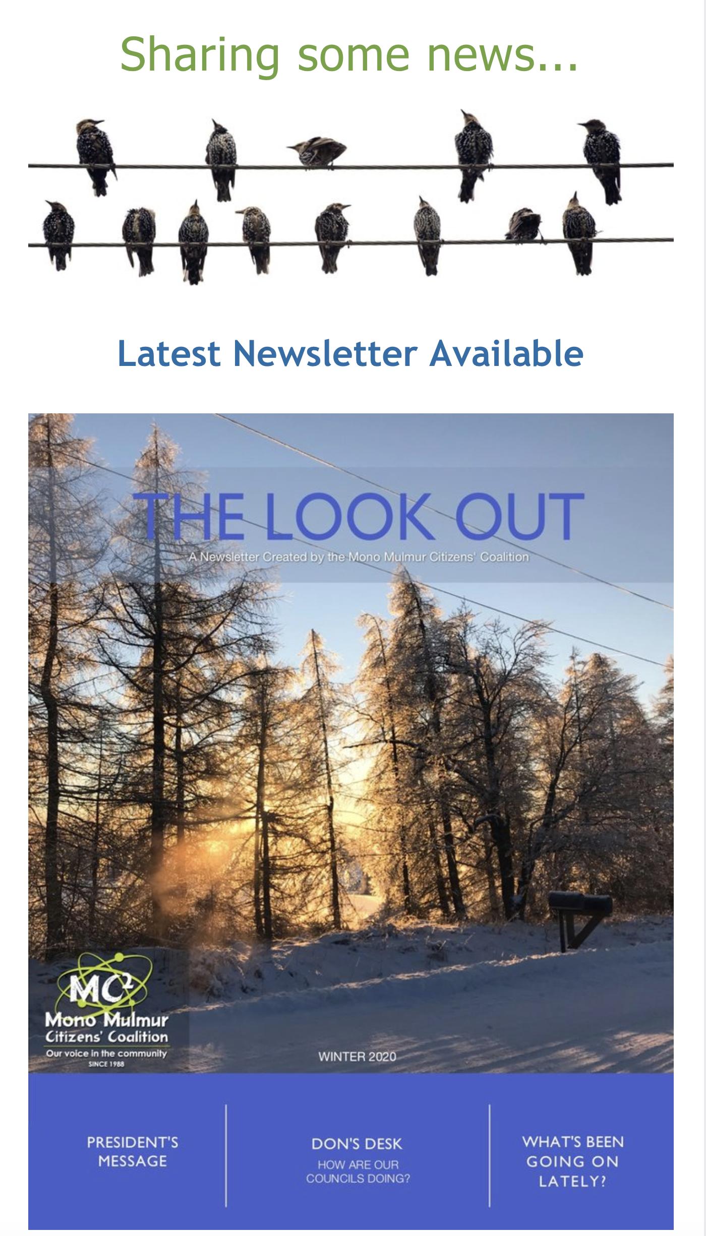 Winternewsletter2020