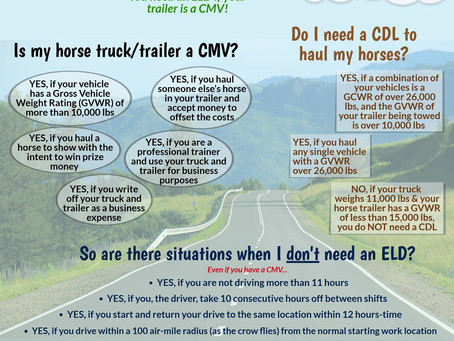 New Laws for Hauling Horses - How Does it Affect You?