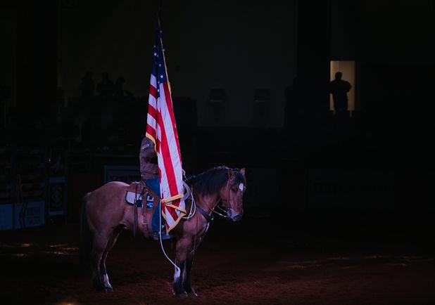 Horse%20%26%20Flag%2034_edited.jpg