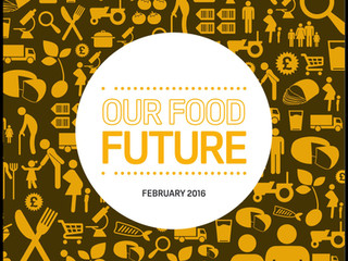 Food Standards Agency 'Our Food Future' Literature Review