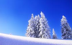 Offerta Neve di primavera