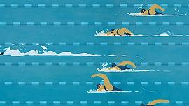 урок плавания.jpg
