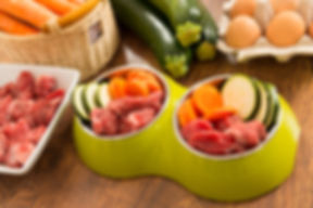 Natural, organic dog's food in a bowl with ingredients zucchini, carrot and raw meat.jpg