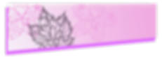 banner-course2.png