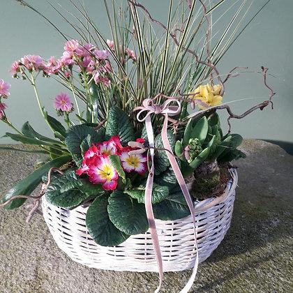 Frühlingskorb groß bepflanzt; Durchmesser ca. 40cm