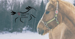 Wisconsin Horse Alliance Cover Photo 4