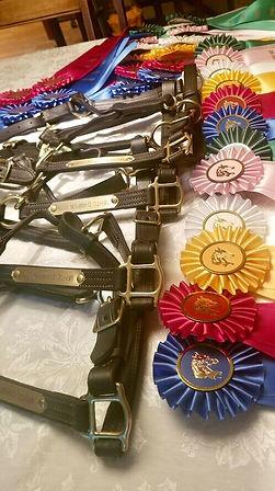 trainer's challenge ribbons.jpg