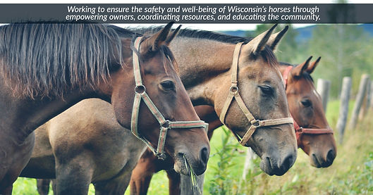 Wisconsin Horse Alliance Cover Photo.jpg