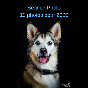 10 photos.png