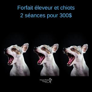 forfait_éleveur_et_chiots.png