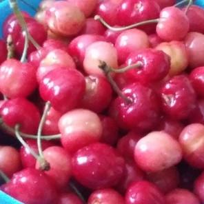 Šta će se dogoditi vašem organizmu ako svakoga dana budete jeli trešnje