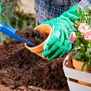 Rad u vrtu vas može učiniti srećnim i pomoći u borbi protiv depresije