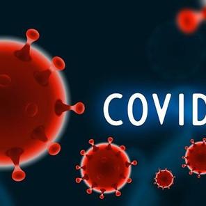 Dnevni bilten o broju zaraženih korona virusom u TK