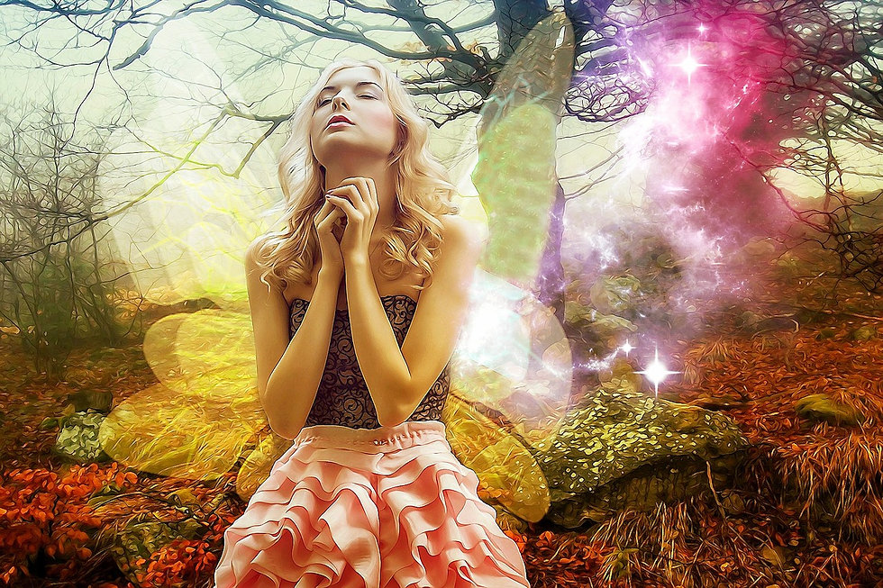 Fairy Fancy