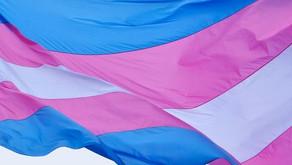 Transsexuellengesetz reformieren und Betroffene einbinden