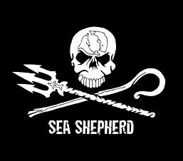 SS Logo_white_0-1-1024x902.png