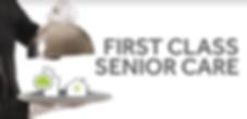 First Class Business Logo_edited.png