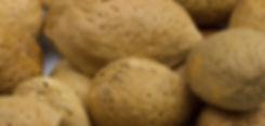 Almonds Mandorle Biologiche Armienti