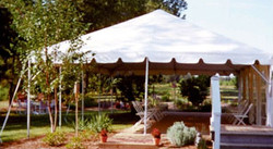 White Frame Canopies