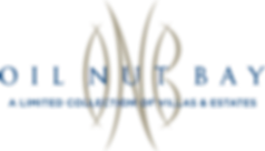 ONB-Logo-.png