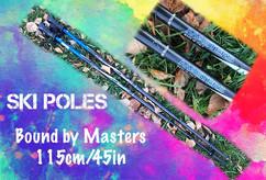 SkiPoles.jpg